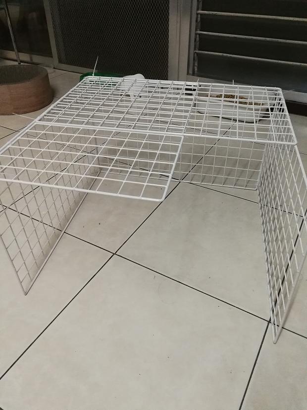 フィリピン・セブ島で猫のケージを100均で手作り